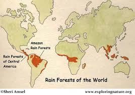 south america map rainforest rainforest of south america