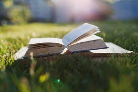 good books for warm days the summer reading list for 2016