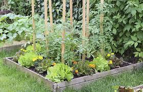 vegetable garden layout plans garden design design your own garden garden design ideas uk
