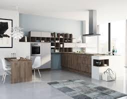Kueche Kaufen Mit Elektrogeraeten Wellmann Einbauküche W1 107 Mit Backofen Hochgebaut Küchenexperte