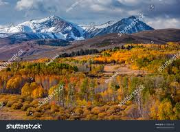 aspen fall colors conway summit stock photo 213586453