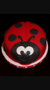 Ladybug Home Decor Best 25 Ladybug Food Ideas Only On Pinterest Ladybug Party