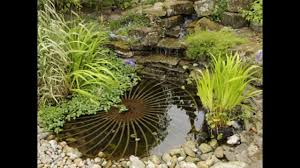 cool small garden pond decorations