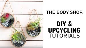 how to make your own upcycled air plant terrarium u2013 the body shop