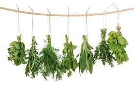 les herbes de cuisine cuisine comment faire sécher les herbes aromatiques
