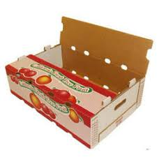 fruit boxes fruit boxes in faridabad haryana manufacturers suppliers of