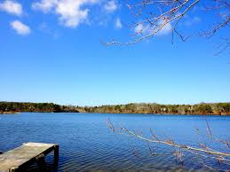165 mill pond drive brewster ma directions maps photos and