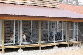 Outdoor Kennel Ideas by Kennel Shot Dancing Duke Kennels