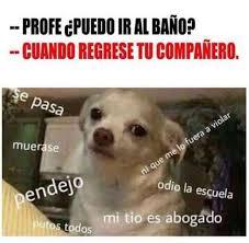 Memes En - memes en español funny memes in spanish