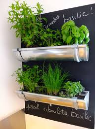 herbe cuisine plante herbe aromatique idee decoration diy do it yourself cuisine