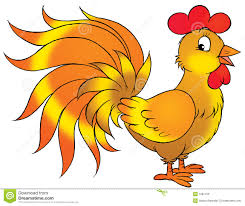 rooster cartoon illustration stock photo image 1681150