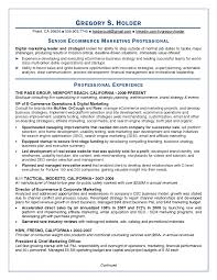 Chief Marketing Officer Resume Cover Letter Marketing Director Resume Sample Marketing Director