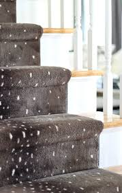 Nora Rubber Stair Treads by 370 Best Entry Way Stairs Images On Pinterest Stairs Entryway