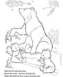 bear coloring print color 013