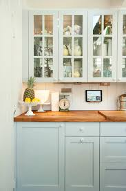 Cabinet Designs For Kitchen The Power Of Painted Cabinets U2013 Design Sponge