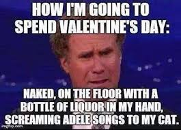 Me On Valentines Day Meme - sums me up now and on valentines day imgur