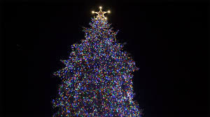 best tree lights amazing events