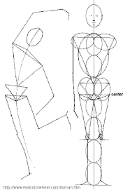 He Made Accurate Drawings Of The Human Anatomy Human Figure Drawing Proportions