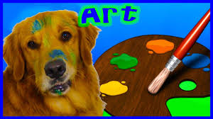 dog golden retriever bo can paint a picture and a special