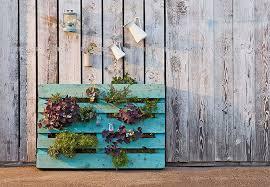 gem se pflanzen balkon vertikal pflanzen i wohnfreude