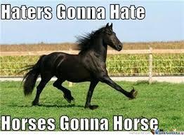 Horse Riding Meme - horse memes black desert online
