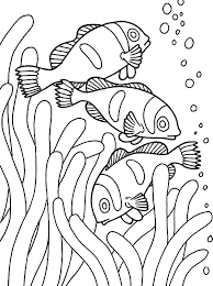 fish coloring pages clown fish anemone coloringstar