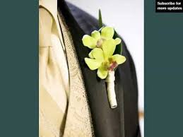 Orchid Boutonniere Green Cymbidium Orchid Boutonniere Set Of Pictures Youtube