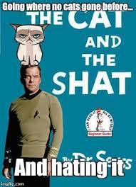 William Shatner Meme - william shatner imgflip