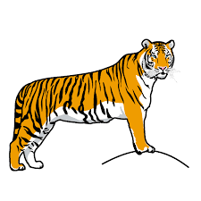 tiger clip arts images free download black and white