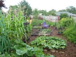 Backyard Vegetable Garden Ideas Backyard Vegetable Garden Ideas Jbeedesigns Outdoor