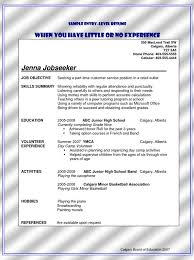Sample Teller Resume by Bank Teller Resume Sample No Experience Free Resume Templates