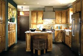 Kitchen Cabinet King Rta Kitchen Cabinets Best Cabinet Sizes Paint Online Platform Bed