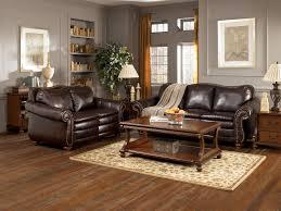 Dark Brown Sofa Living Room Ideas by Dark Brown Living Rooms 8093 Dohile Com