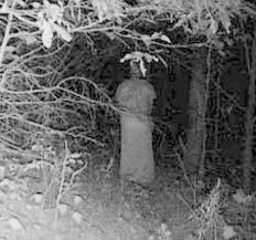 spirit halloween erie pa halloween photos 30 freaky trail camera shots outdoor life