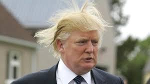 Hair Meme - donald trump s hair know your meme