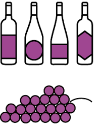 wine facts kinds of wine wine 101 learn about wine our wine guide