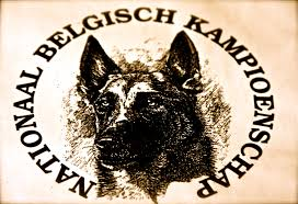 belgian shepherd louisiana secret service dog falls to death at biden event in el dorado county
