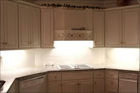 Kitchen Fluorescent Light Covers by Kitchen Sky Ceiling Paint Led Sky Tile Fluorescent Light Panel