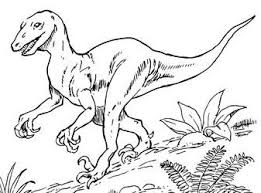dinosaurs coloring pages coloringpagesonly