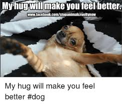 Feel Better Meme - wwwfacebookcomstopanimalcrueltynow my hug will make you feel