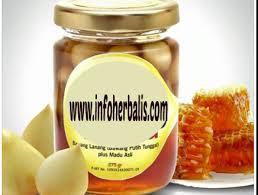 bawang putih dan madu kombinasi herbal dahsyat melawan kanker