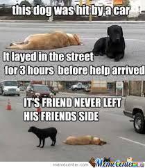 Friends Forever Meme - friends forever by slipknot hammock meme center