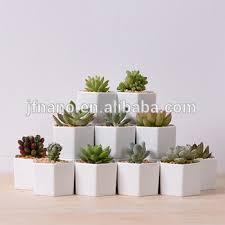 desktop decor hexagon small white ceramic planter pot view
