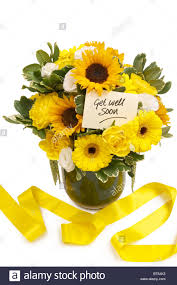 get better soon flowers get well soon flowers in a vase stock photo 32152375 alamy