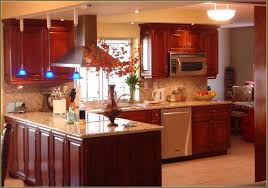 Modern Kitchen Cabinets Miami Home Design Ideas Fl  Idolza - Custom kitchen cabinets miami