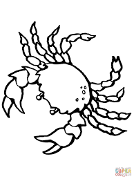 crab decapod crustacean coloring page free printable coloring pages