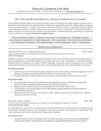 resume computer skills example basic computer skills cv cv examples computer skills essay basic computer skills resume resumes computer skills how to write