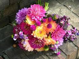 wedding flowers malta best 25 zinnia wedding flowers ideas on seasonal