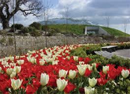 Botanical Gardens Wales The National Botanic Garden Of Wales Carmarthen Gardens