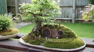 Decorative Plants For Home Decorative Mini Garden In A Pot Ideas For Home Youtube